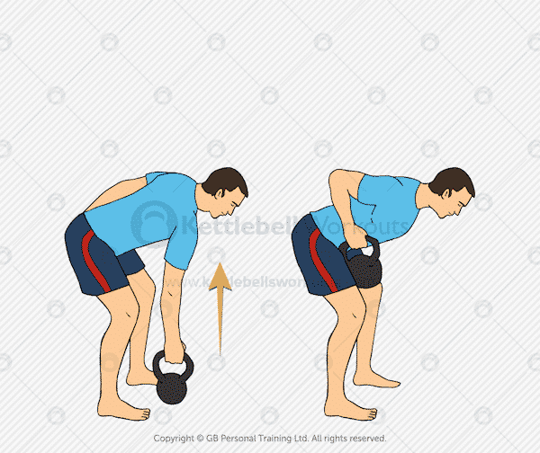 Kettlebell Regular Row for the back muscles